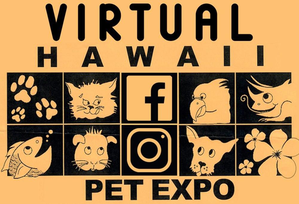 Virtual Pet Expo